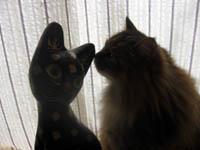 ネコ&リク